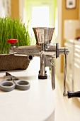 Wheat Grass Juicer on Kitchen Counter with Wheat Grass