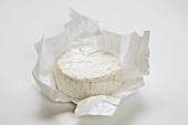 Camembert Cheese in Paper