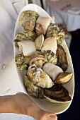 Chef Holding a Plate of Assorted Shellfish, Michy's Restaurant, Miami