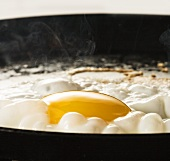 A fried egg in a pan (close up)