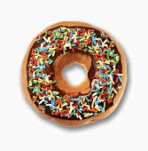 Donut with Chocolate Icing and Colored Sprinkles