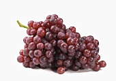 Bunch of Purple Grapes on a White Background