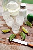 Schnapsgläser aus Eis, Limettenschnitze, Salz und Tequila