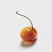 A Single Ranier Cherry