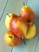 Many Williams Pears on Wood