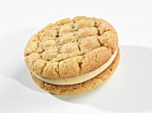 A Single Peanut Butter Sandwich Cookie on a White Background