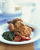 Roasted Cornish Hen with Tomato and Wilted Greens