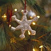 Decorated Snowflake Cookie Christmas Ornament on the Tree