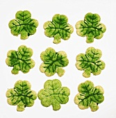 Neun Kleeblattplätzchen zum St.Patricks Day (Irland)