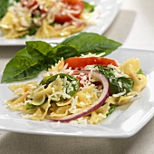 Farfalle Salad with Tomato and Basil; Close Up