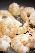 Shrimp and Garlic in a Frying Pan; Close Up