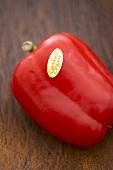 Eine rote Paprika aus biologischem Anbau