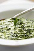 Close Up of a Bowl of Creamed Spinach; Spoon