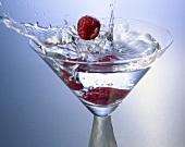 Himbeeren fallen in ein Martiniglas