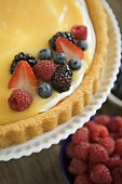 Close Up of Mixed Berries on a Tart