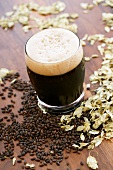 Glass of Imported Chocolate Malt Beer, Grains and Hops