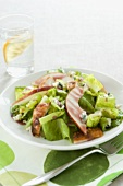 Chicken and Pear Salad with Blue Cheese and Dressing, Glass of Water