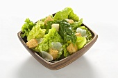 Caesar Salad in a Square Bowl on a White Background