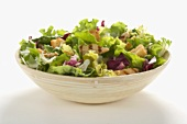 Grilled Chicken Salad with Mesclun Greens in a Bowl, White Background