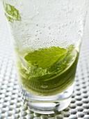 Ein Glas Mojito (Nahaufnahme)