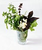 Fresh Herb Bouquet with Mint and Basil in a Cup