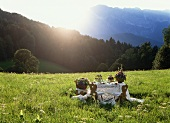 Table Set in a Field with Mountain Views (Austria)