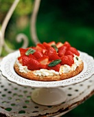 Single Layer Strawberry Shortcake on a Pedestal Dish
