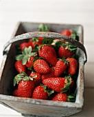 Fresh Organic Strawberries in a Wooden Basket