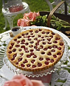 A Raspberry Tart in the Garden with Pink Roses