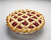 A Whole Cherry Pie with Lattice Crust