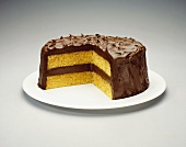 A Yellow Layer Cake with Chocolate Frosting