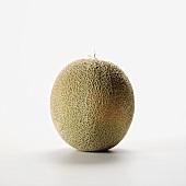 Eine ganze Cantaloupemelone
