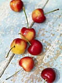 Seven White Cherries