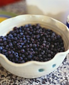 Bowl of Wild Maine Blueberries