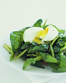 Soft Boiled Egg on Sauteed Spinach