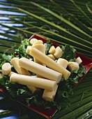 Raw Bamboo Shoots on Greens