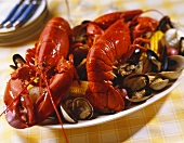 Lobster Bake Platter with Shellfish and Corn on the Cob