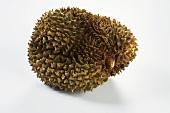 Whole Durian Fruit on White