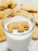 Elephant Animal Cracker Floating in a Glass of Milk