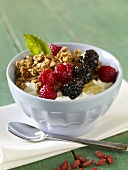 Bowl of Yogurt with Granola, Berries and Honey