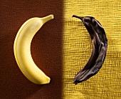 Eine frische und eine faule Banane