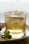 Ein Glas Rum-Cocktail mit Eiswürfeln