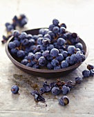 Bowl of Fresh Blue Grapes