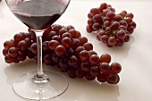 Glass of Syrah with Grapes