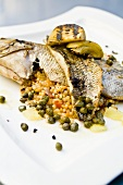 Wood-Fired Bronzini with Fennel and Couscous Pine Nut Salad