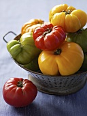 Various Heirloom Tomatoes in a Colander