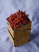 Lingonberries in Stacked Boxes
