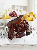 Lobsters and Steamers in Bowl of Table
