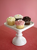 Four Cupcakes on a Pedestal Dish
