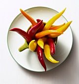 Chili Peppers in a Mug; White Background